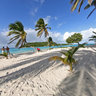 Tobago Cays - The Grenadines (Carribean)