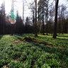 The King's garden (Králova zahrada)
