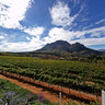 Delaire Graff Estate view of Hottentots-Holland Mountains