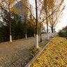 江苏师范大学校园风景