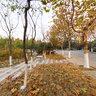 江苏师范大学校园风景-休闲花园之一