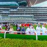 Dubai World Cup 2014 Gigapixel Image 1