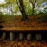 Šmartinsko jezero - jesen