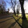 Alexandra Park, Manchester