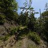 Knorreichenstieg am Edersee