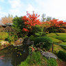 妙心寺 退蔵院 余香苑-Taizoin Zen Buddhist Temple,autumn colors,Kyoto