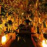 貴船神社 七夕笹飾りライトアップ Kifune Jinja Shrine, Tanabata Star Festival,Kyoto