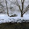 Kyoto kifune river,Eboshiiwa rock. 京都貴船 烏帽子岩 冬