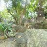 Wat Khaosukim-LEKGIS