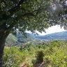Trail Bagni di Lucca