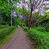 Mercur Park (Parcul Mercur), Cluj-Napoca