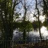 Graves Park Winter 1