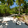 Ile Therese, Seychelles, Mahe