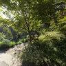 新竹尖石鄉 6號公園露營區 入口