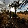 Garmeh Kavir Maziar Aledavod Atashoni Iran Desert