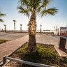 Finikoudes Beach Cyprus Larnaca Athenon St Kfc Restaurant