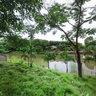 Berd Garden Home Surrounding