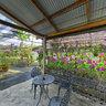 Phuket Orchid Farm 3