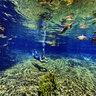 Olho dagua water spring 3