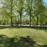 City Park