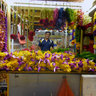 Street Vendor, Campbell Lane, Little India, Singapore