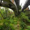 Campuhan Bridges, Ubud, Bali
