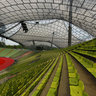 Munich - Olympic Stadium