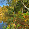 Rothenbuerger Weiher in autumn