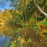Rothenbuerger Weiher in autumn