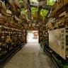 Aoshima Shrine2