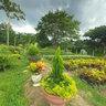 Nursery 2 Track Santa Marta (Magdalena) - Riohacha (La Guajira), Colombia