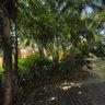 Garden at the Vinoy Renaissance Resort, St. Petersburg, Florida