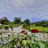 باغ گل شمس