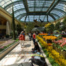 Flower Garden, Bellagio Hotel
