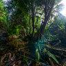 Cascade Anse a la Fontaine