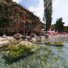 Gradiste Camp/Car Camp - Ohrid Lake, Macedonia