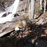 Falls Creek Falls in December