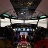 B737-800NG Homecockpit /1/ Dark/ 2014