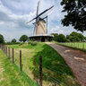 Greyhound Mill (molen de Windhond)