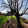 Mainz-Kastel Rheinufer