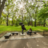 saratov-central-park-bear-russia