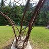 sculpture park kramsach