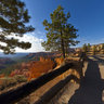 Bryce Canyon Overlook In Morning Light, Bryce Canyon National Park, Utah, USA