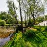 Totteridge Village Pond