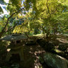 The Japanese Garden, S. Mary Grace Burns Arboretum