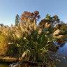 Claypit Creek, Hartshorne Woods, New Jersey