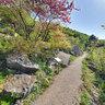 Riva del Garda, walk Busatte-Tempesta