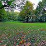 Ekenstein Park, Appingedam - Autumn Leaves