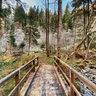 Mills Trail Kaning I
