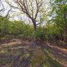 landgoed van de buitenplaats Berkenbosch 3